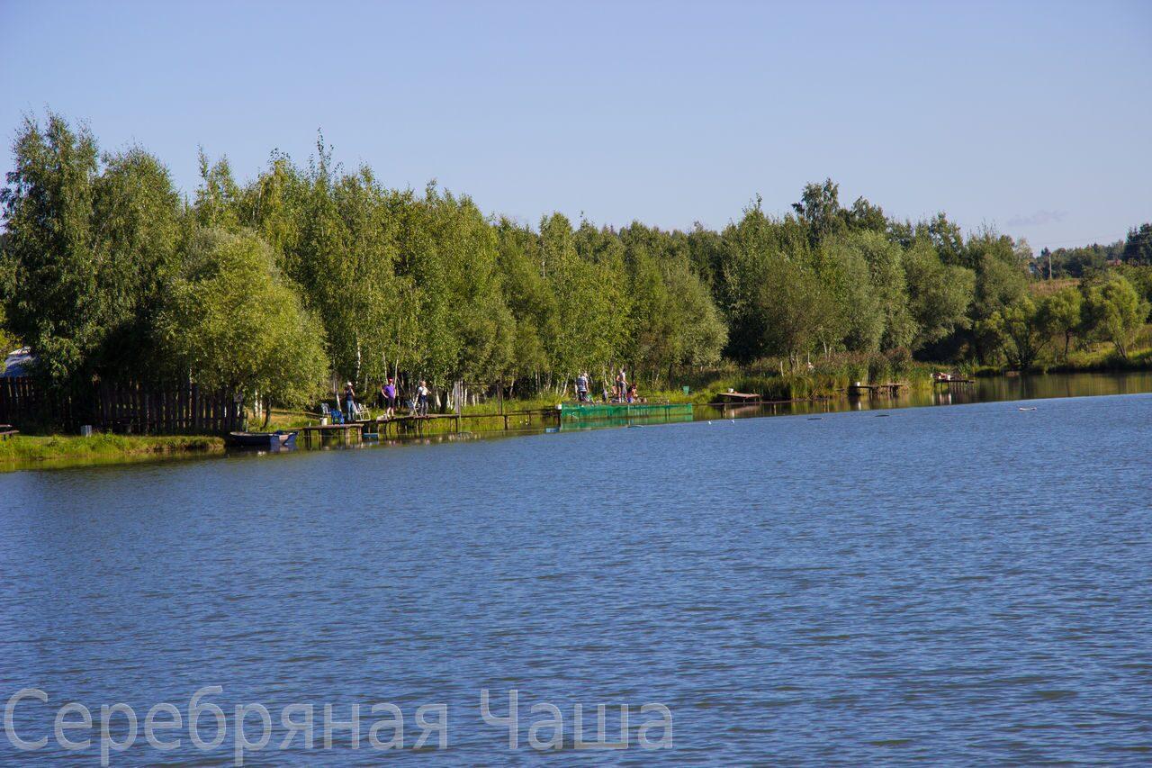 рыбалка подмосковье киевское